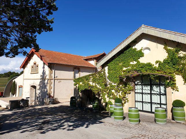 Region słynie z wybornych win, a jednym z miejsc, w których powstają cenione przez koneserów trunki, jest winnica Château La Coste