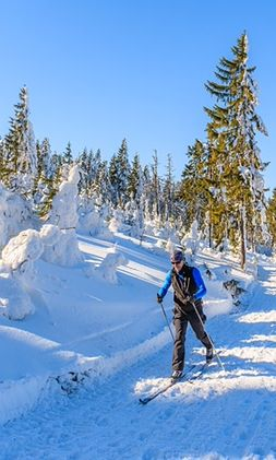 Gdzie na narty? Wędrówki w Polsce. Najlepsze miejsca