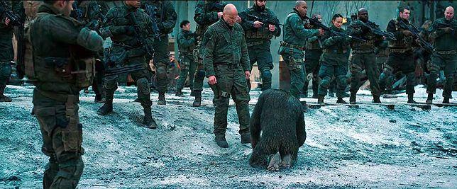 """""""Wojna o planetę małp"""": Andy Serkis rządzi [RECENZJA]"""