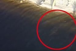 Potwór z Loch Ness. Nagrano niesamowity film. Autor nie mógł uwierzyć