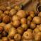 NASA chce hodować ziemniaki na Marsie