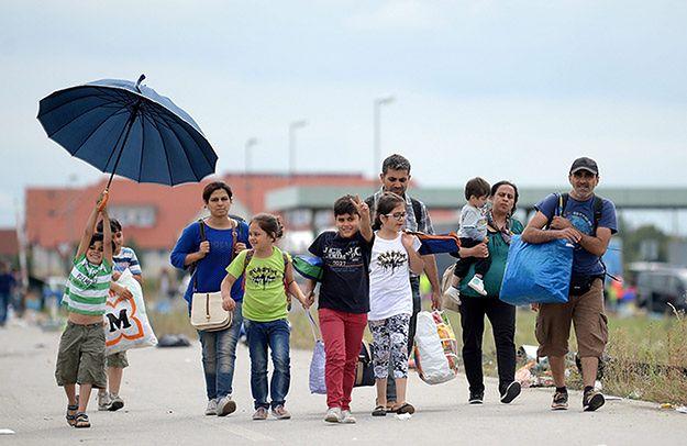 Kolejni imigranci idą na piechotę z Budapesztu do Wiednia
