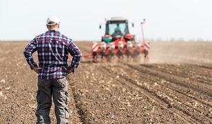 Wyliczenia GUS niepokoją rolników. Mogą stracić 500+
