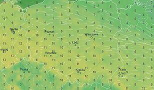 W weekend prawdziwie wiosenne temperatury i dużo słońca
