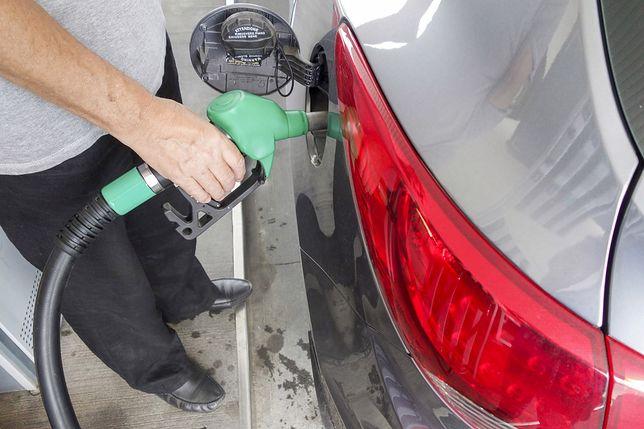 Ceny benzyny i diesla bez większych zmian. LPG pójdzie w górę