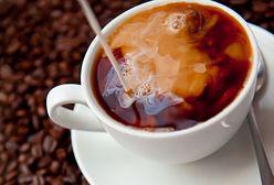 Kawa – wartości odżywcze, właściwości lecznicze, kulinarne zastosowanie, przepisy