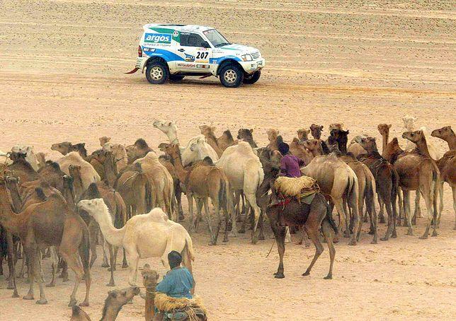 W lutym w Mauretanii przeciętna temperatura wynosi ok. 31 stopni