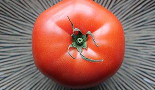 Ostatni taki pomidor – o żywności GMO
