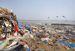 Egzotyczne plaże toną w śmieciach. Plastik jest coraz poważniejszym problemem