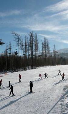 Zaczęły się ferie - gdzie pojechać na narty?