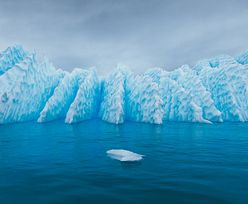 Złe wieści z Antarktydy. Wojsko wszystko potwierdza