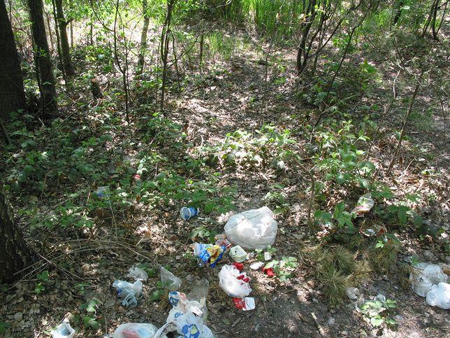 Zdjęcie ilustracyjne. Śmieci zostawił w lesie mieszkaniec Ślesina