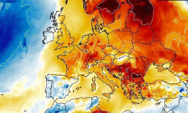 Pogoda wariuje. W Polsce coraz cieplej