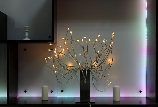 Drzewka LED możemy ustawić we wnętrzu, w ogrodzie lub na tarasie