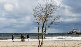 IMGW ostrzega: silny wiatr na Wybrzeżu i w Lubuskiem