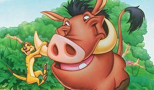 Timon i Pumba - oglądaj online w TV - fabuła, bohaterowie, gdzie obejrzeć