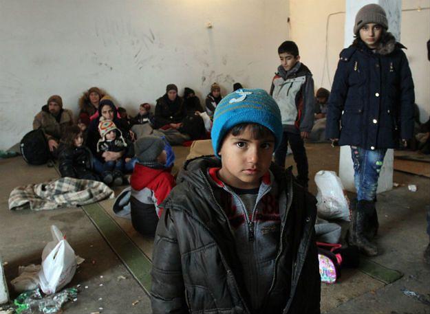 Migranci w Dimitrowgradzie na granicy serbsko-bułgarskiej