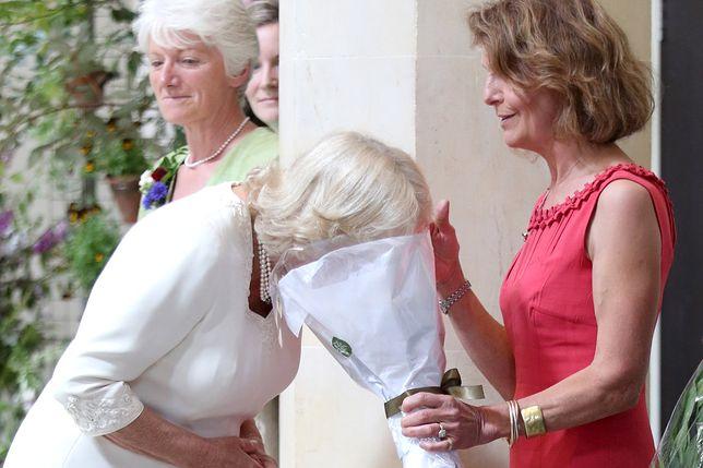 Camilla Parker Bowles wącha kwiaty