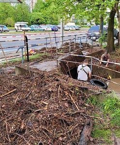Gliwice. Stare opony i meble w potoku. Zwiększają ryzyko podtopień
