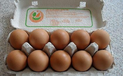 Ceny jaj przed Wielkanocą stabilne, a nawet lekko spadają