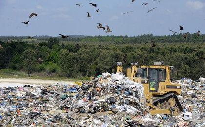 Kwiatkowski: skontrolujemy firmy, które zajmują się wywozem śmieci