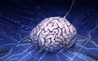 Amerykanie inwestują 28 milionów dolarów w badania nad sztuczną inteligencją