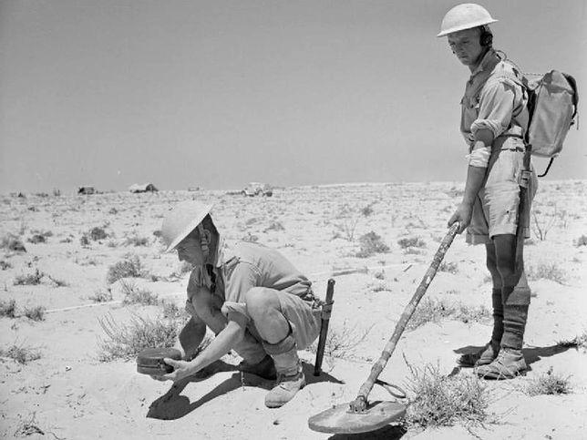 Żołnierze z polskim wykrywaczem min