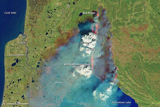 Arktyka płonie. Widać to na zdjęciach satelitarnych.