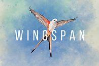 Wingspan - ornitologiczna karcianka z 2019 roku, nareszcie w formie cyfrowej!