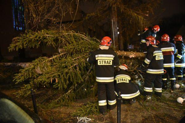 Strażacy usuwają przewróconą przez wiatr choinkę pod Oknem Papieskim w Krakowie