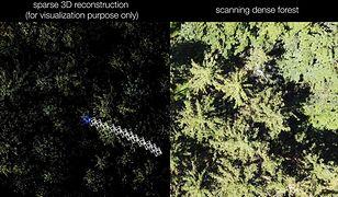 Nowa technologia szukania zaginionych w lesie
