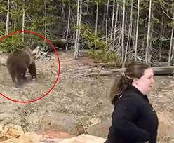 Podeszła do grizzly, żeby zrobić zdjęcie. Stanie przed sądem