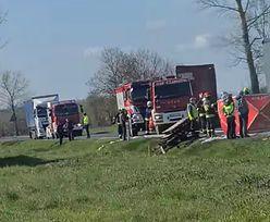 Lubuskie. Tragiczny wypadek na DK 31. Drastyczna śmierć kierowcy mercedesa