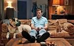 Ryan Reynolds rozmawia ze swoim wścibskim kotem