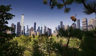 Bee Simulator polskiego studia VARSAV Games Studios S.A.