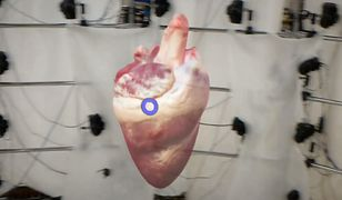 Tak wygląda wirtualne bijące serce