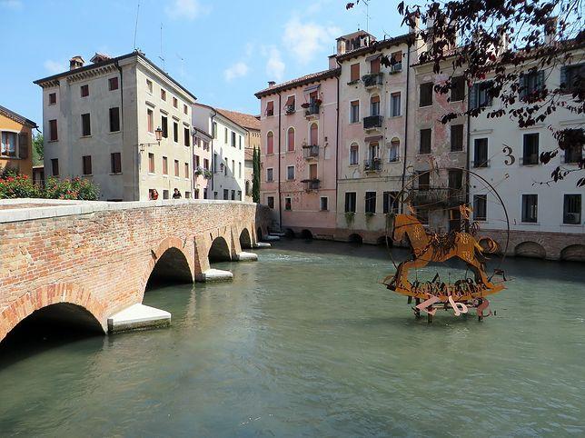 Lotnisko Wenecja Treviso (TSF). Jak dostać się do miasta?