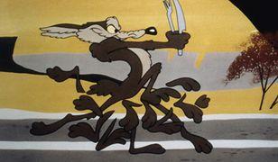 Wiluś E. – najbardziej znany kojot dostanie własny film!