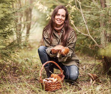 Grzyby już są w polskich lasach. Wiemy, gdzie ich szukać