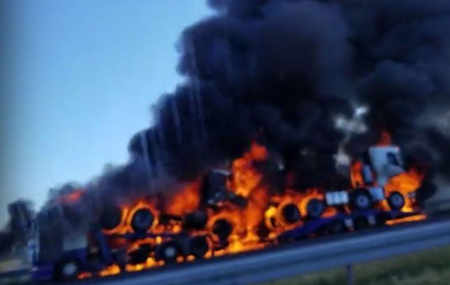 Pożar tirów na autostradzie A2. Trasa zablokowana
