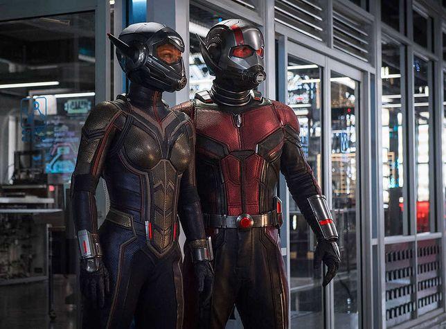 """""""Ant-Man i Osa"""": kochanie, zmniejszyłem superbohatera. Recenzja drugiej części hitu"""