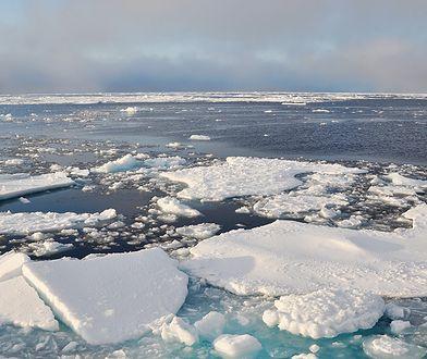 Lód w Arktyce topnieje bardzo szybko. Może zniknąć całkowicie jeszcze w XXI wieku.