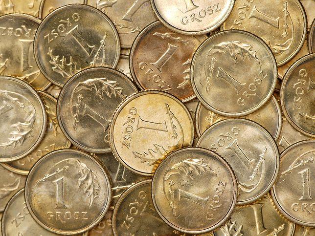 Znalazłeś złotówkę? Musisz zwrócić ją staroście - przynajmniej na razie