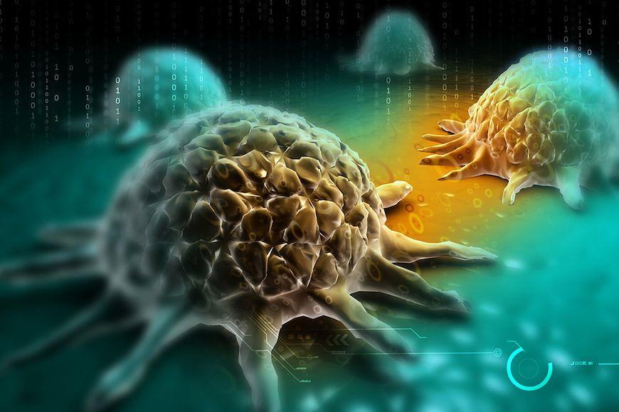 Zmniejsza ryzyko raka