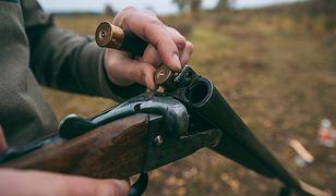 Specustawa o dzikach: wojsko ma chronić myśliwych wyposażonych w tłumiki do broni. Strach iść do lasu