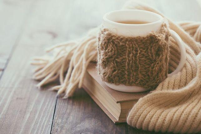 Herbatka z igliwia
