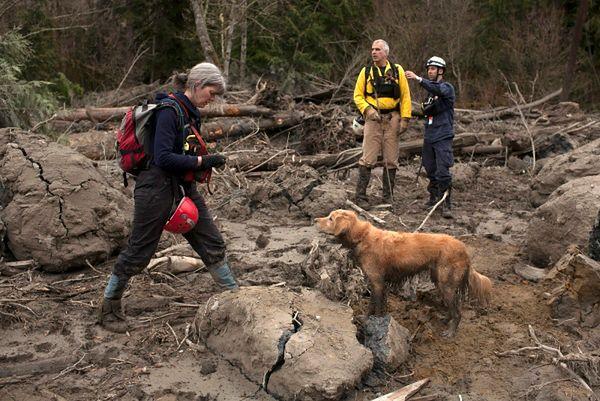 Ekipy ratunkowe pracują w wyjątkowo ciężkich warunkach