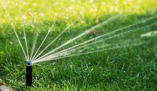 Nowoczesne systemy nawadniania są szczególnie przydatne w dużych ogrodach.