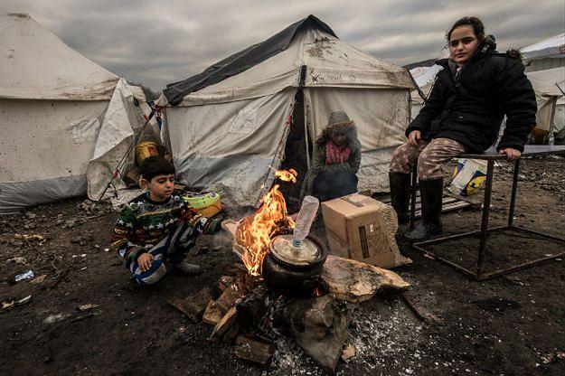 Tzw. dżungla, czyli obóz imigrantów w Calais