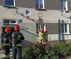Służby pojechały do pożaru. Na miejscu spotkało je spore zaskoczenie
